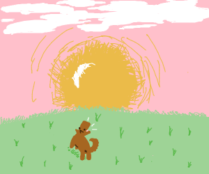 Dog in the field, barking at the sunrise