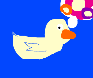 duck thinks about flowers