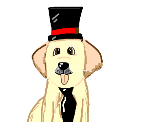 Dog with A tie and top hat