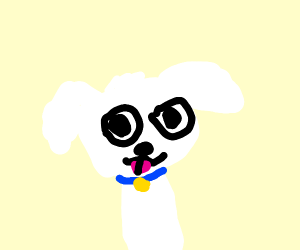 white fur pupper