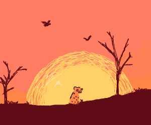 Lepard in saherra with orange sunset