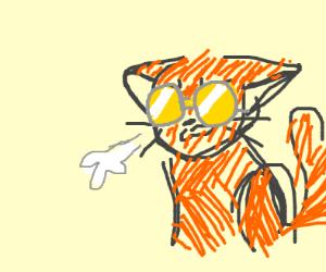 Orange cat w/ those john lennon glasses sighs