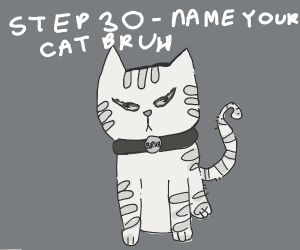 Step 29-See a bruh moment.