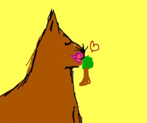 GIGANTIC cat kisses at poor little tree