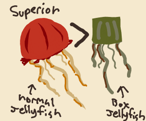 A jellyfish worse than the box jellyfish