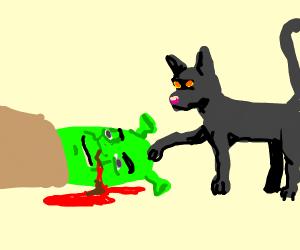 Black cat finds Shreks corpse