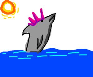 A dolphin with spiky hair