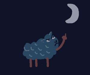 angry sheep staring up at the moon