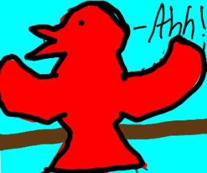 bird going ahh