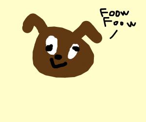 Cross-eyed Dog