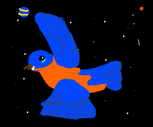 Blue Birb in space