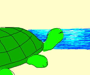 Turtle dreams about freedom