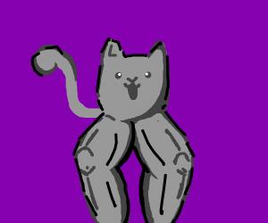 Cat never skips leg day