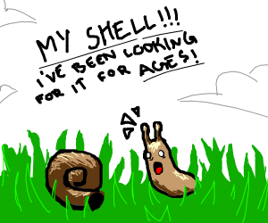 a snail finding its shell in the grass