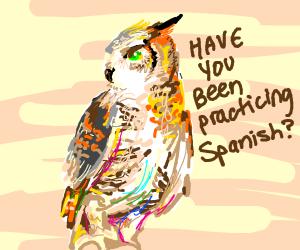 Brown, angry Duolingo Owl