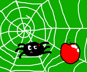 spider confused at an apple