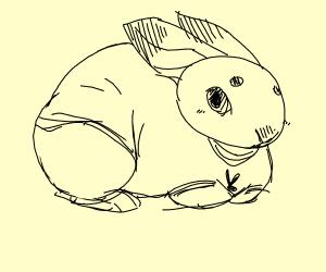 Rabbit with upturned leg slumbers