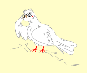 Dove with Glasses