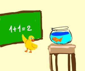 duck teaching fish that 1+1=2