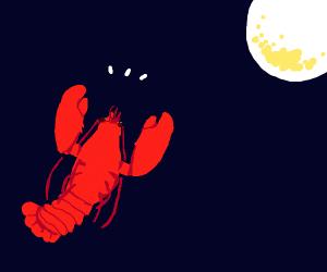 Lobster praises the moon