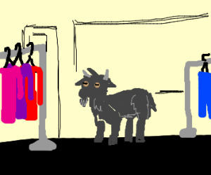 Goat in a Store
