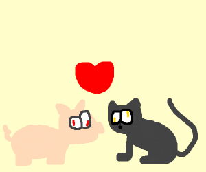 psycho cat and pig, dating