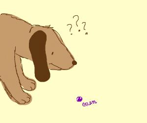 Doggo confused by a grape sucker