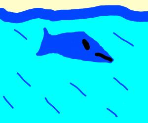 Powerful Catfish