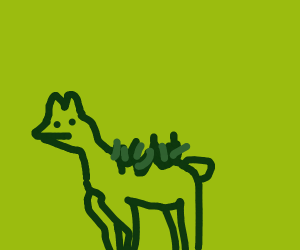 Llama with grass on its back