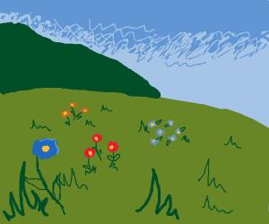 Lil flowers in a grassy meadow