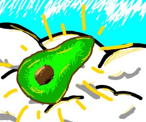 holy avacado