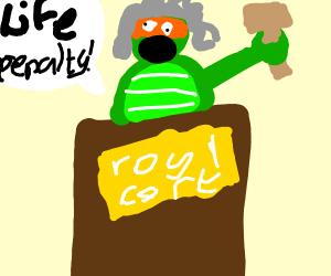 Mutant Ninja turtle judge in court