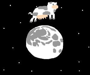 Cow jumps over the moon. moo