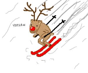 Reindeer skiing