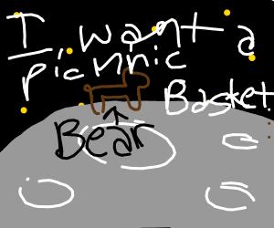bear on the moon wants a picnic basket