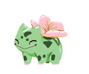 Bulbasaur with a cherry blossom on their back