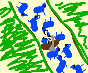 Crossing the blue dog river