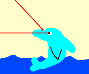dolphin shooting lazers
