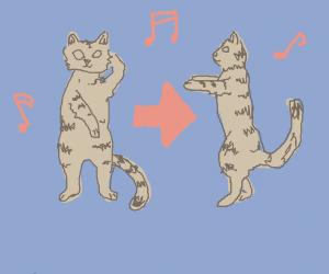 Cat doing the Macarena