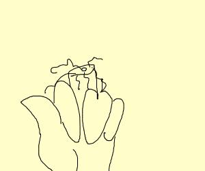 cut off middle-finger