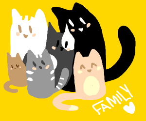 Family of cats.