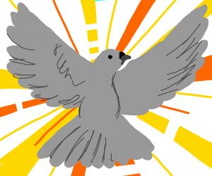 A immortal Pigeon