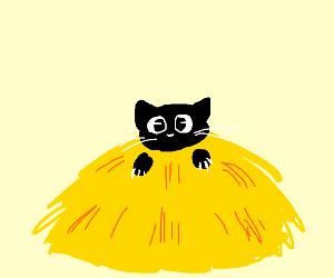 Black cat in a haystack. :)