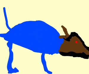 A blue cat with a horse head