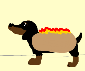 Hotdog, with actual sausage dog (daschund)