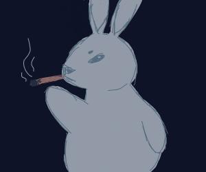 Bunny smoking