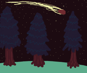 Meteor flies over a Forest