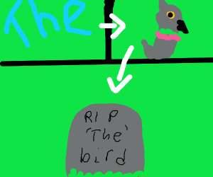 The became a bird- then died