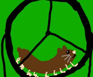 hamsterpede