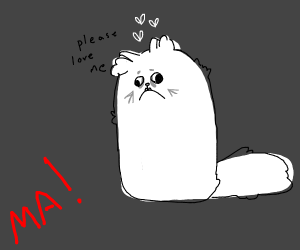Ma there's a weird cat otside
